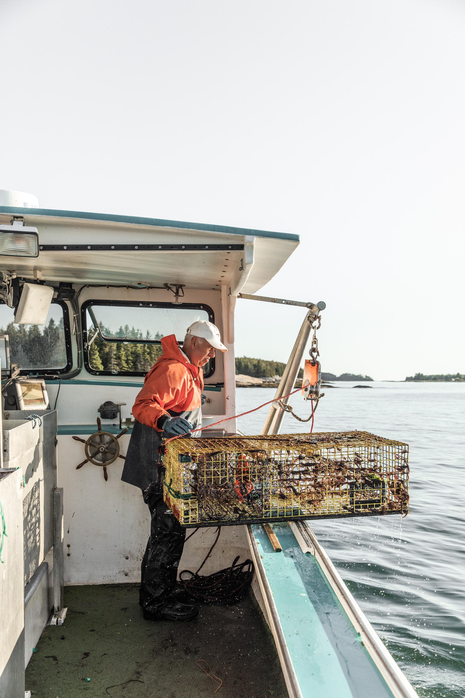 GretaRybus-Blog-NYT-Lobster-2639.jpg