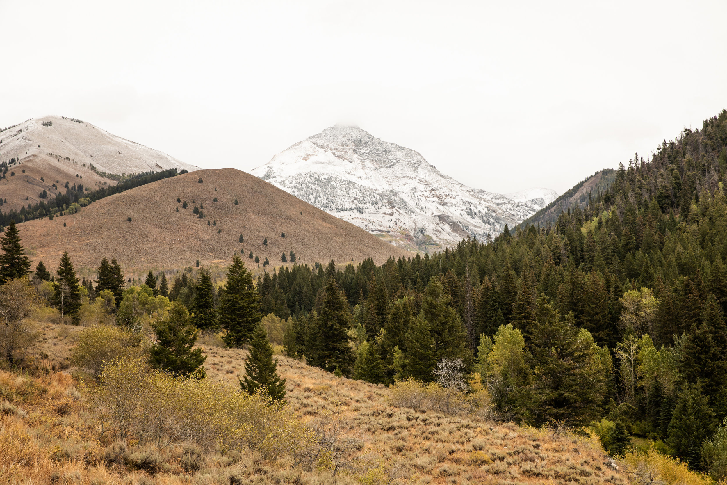 GretaRybus-Idaho-Climate-Web-172-5598.jpg