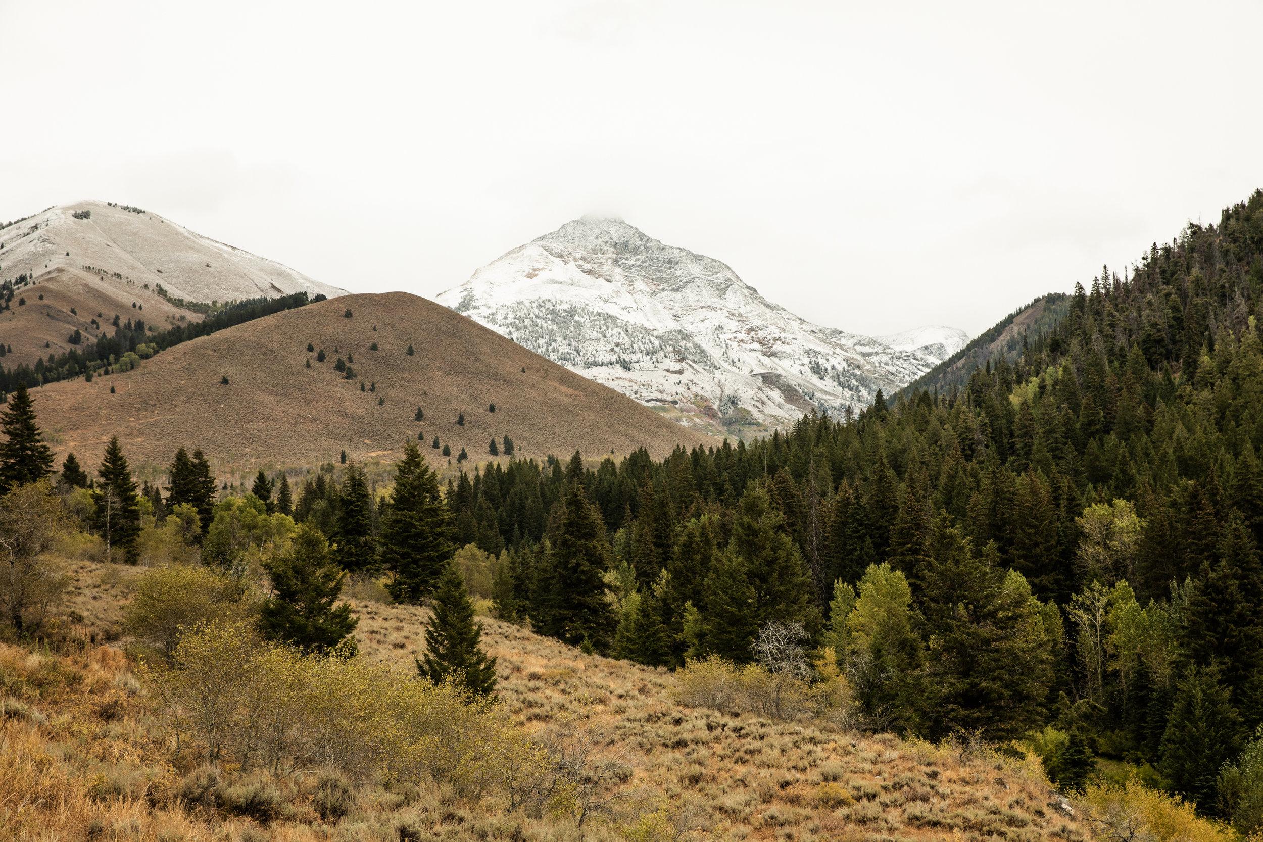 GretaRybus-Idaho-Climate-v2-01-5598.jpg