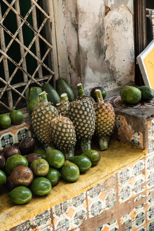 GretaRybus-Zanzibar-26-8556.jpg