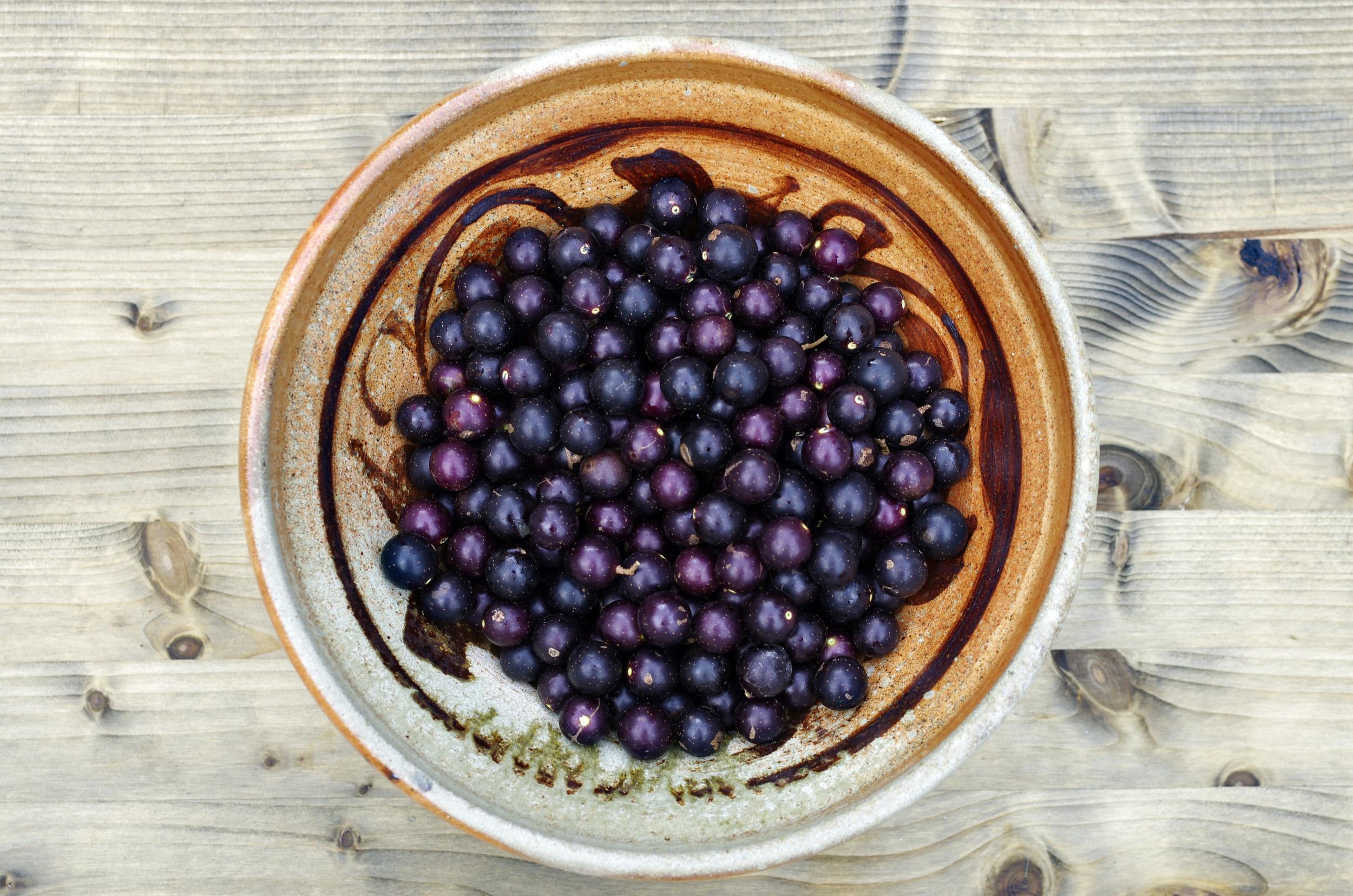 grapesinbowl.jpg