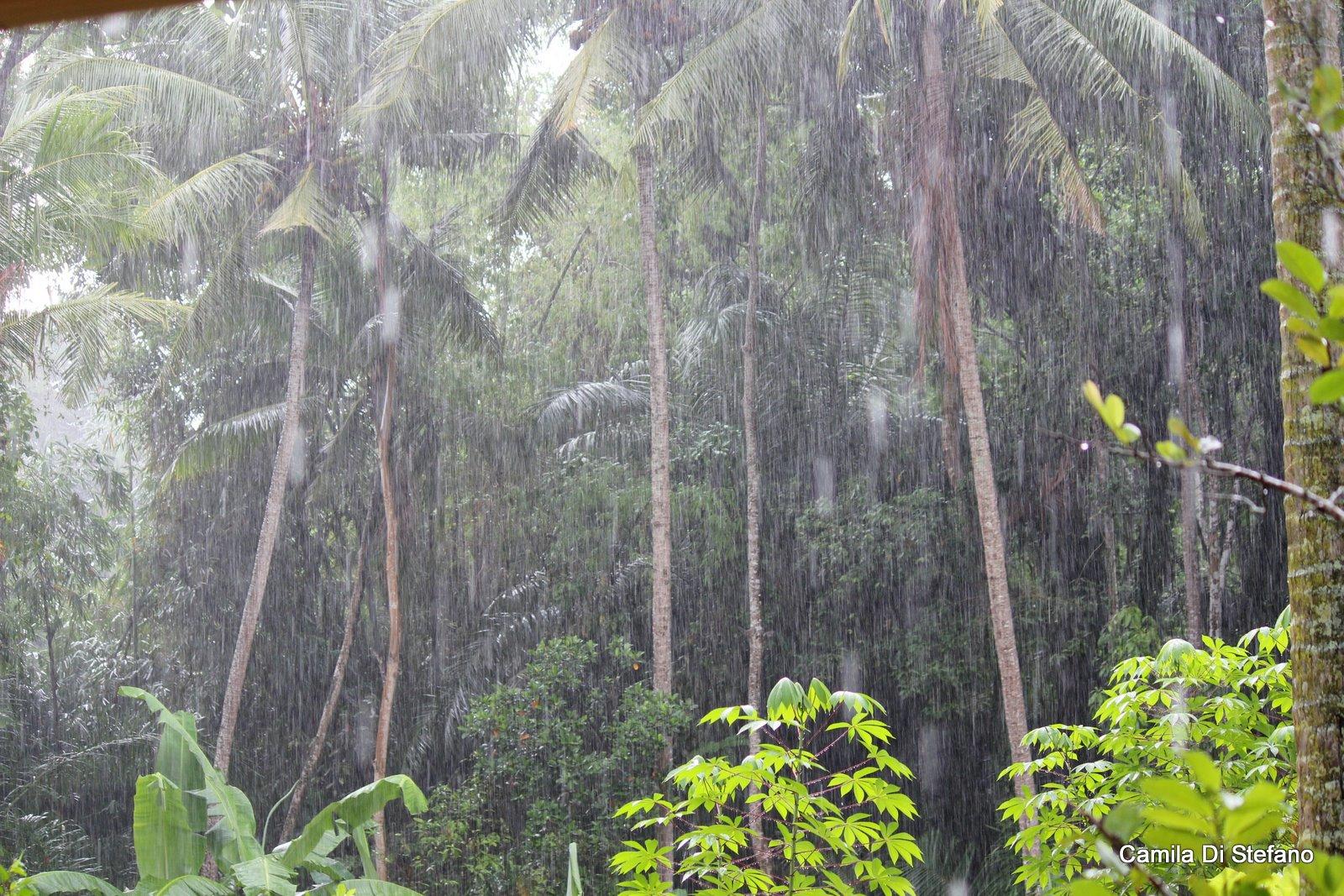 Downpouring rain