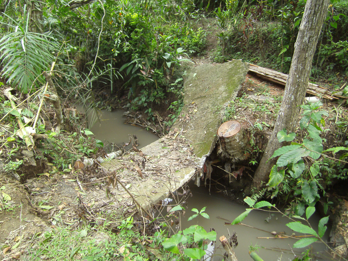Destroyed bridge 2