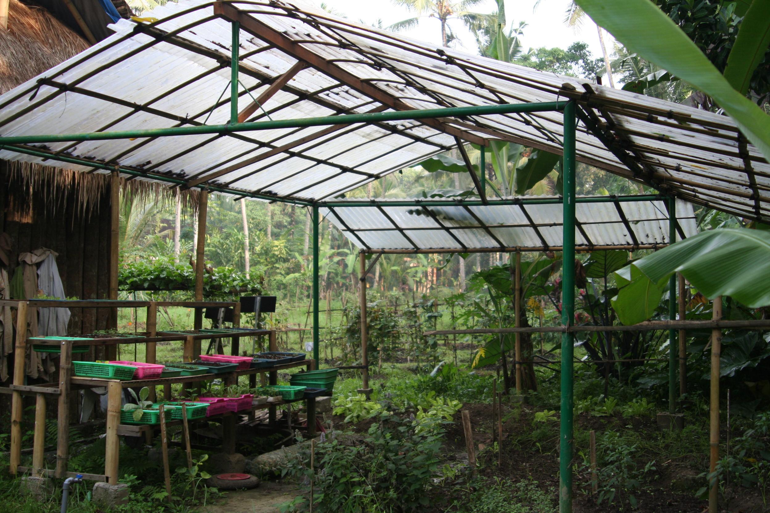 Plant nursery_