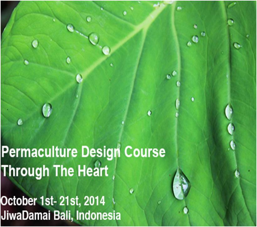 design course flier