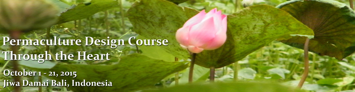 Permaculture_course-version_web