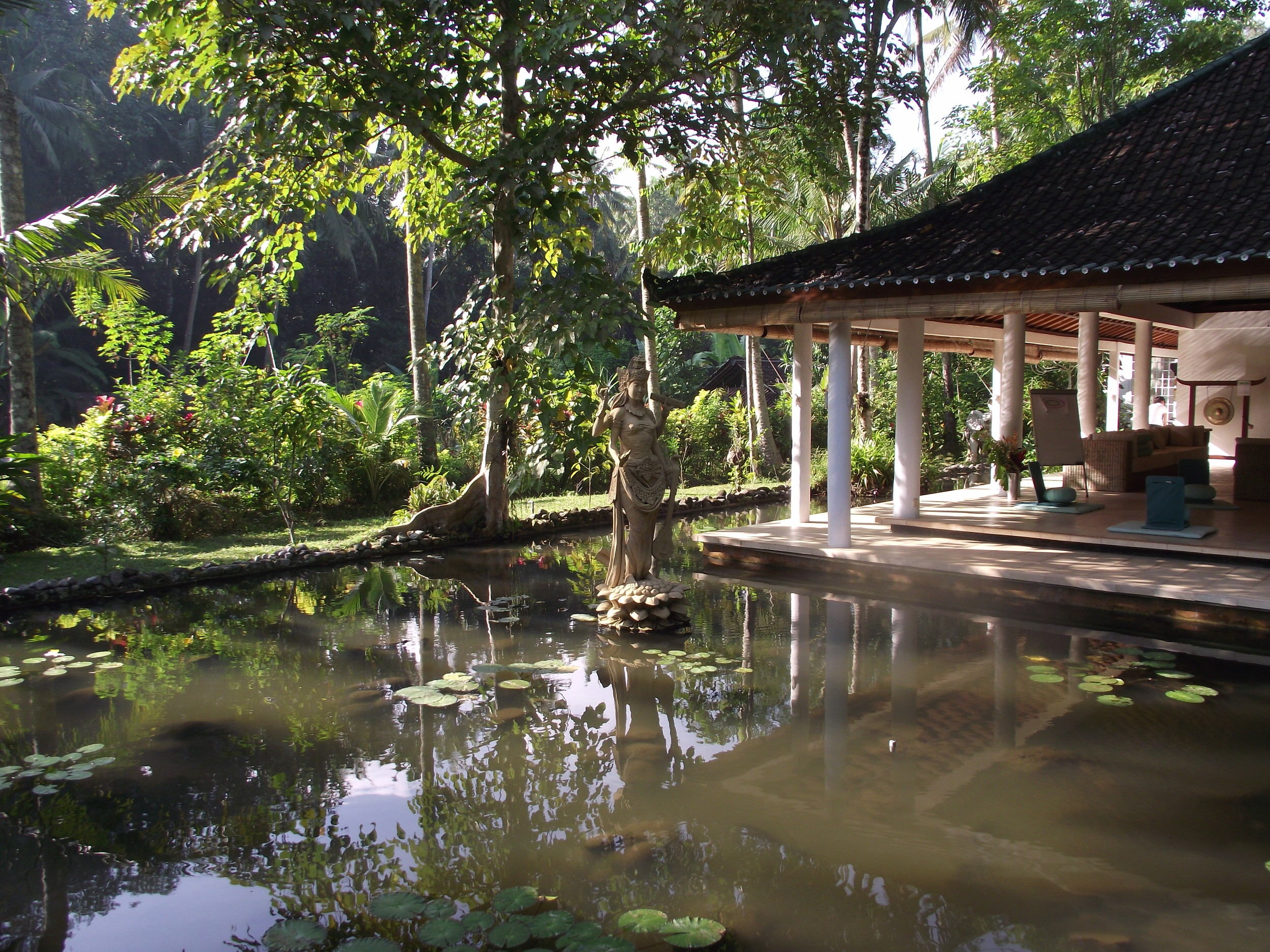 Pond at JIwa DAmai