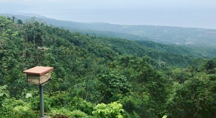 earthship.PNG
