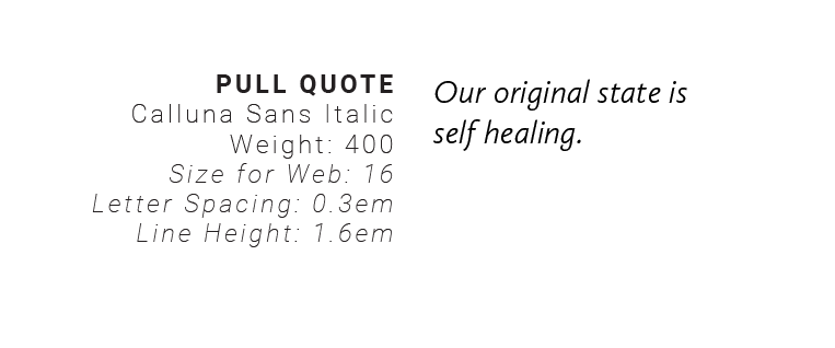 Dr erin moore brand typography pullquote.png
