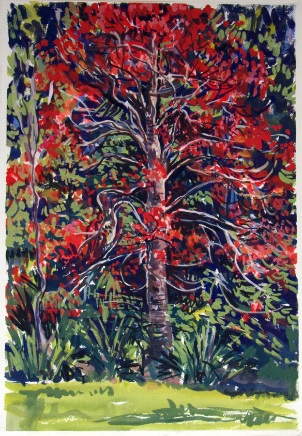 Flame Tree, 2013, gouache on paper
