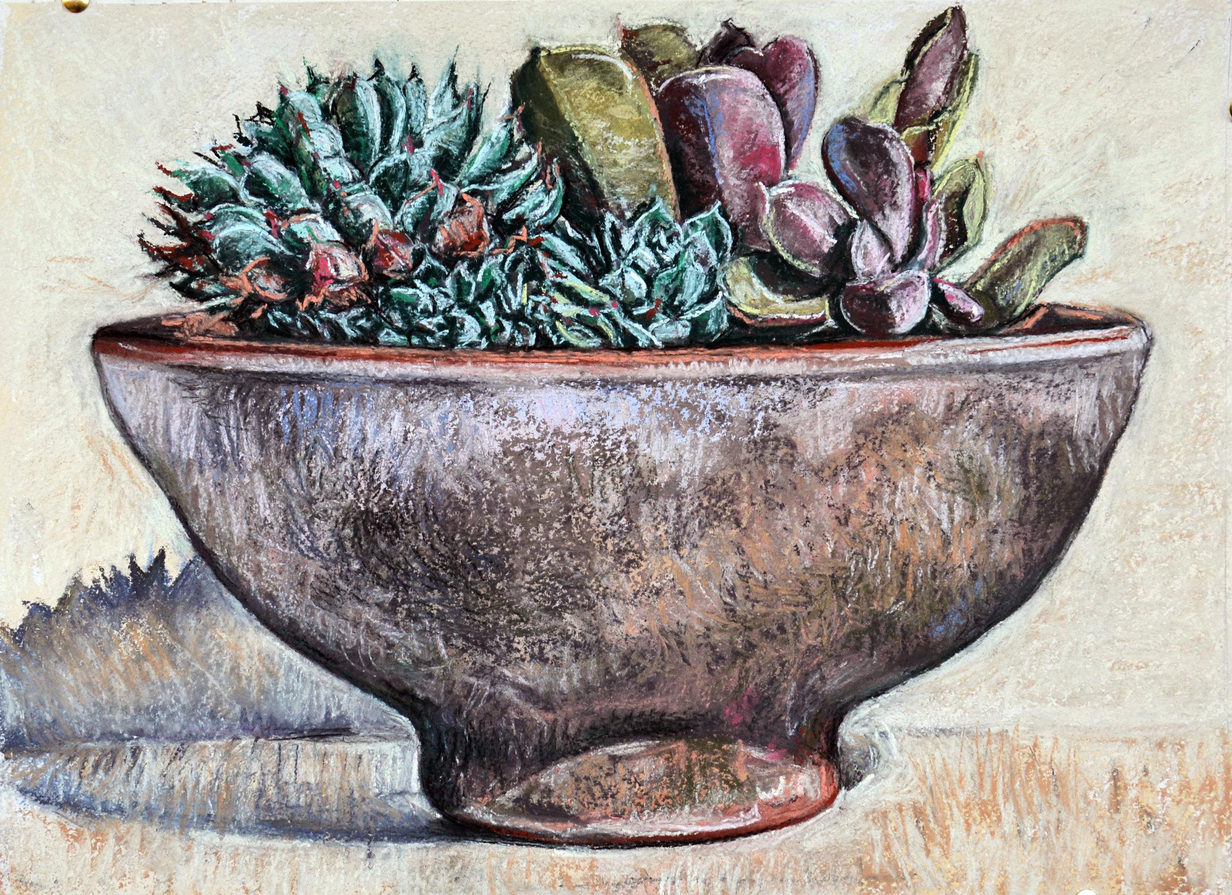 Succulent bowl, 2016, pastel on rag paper, 48cm c 35cm