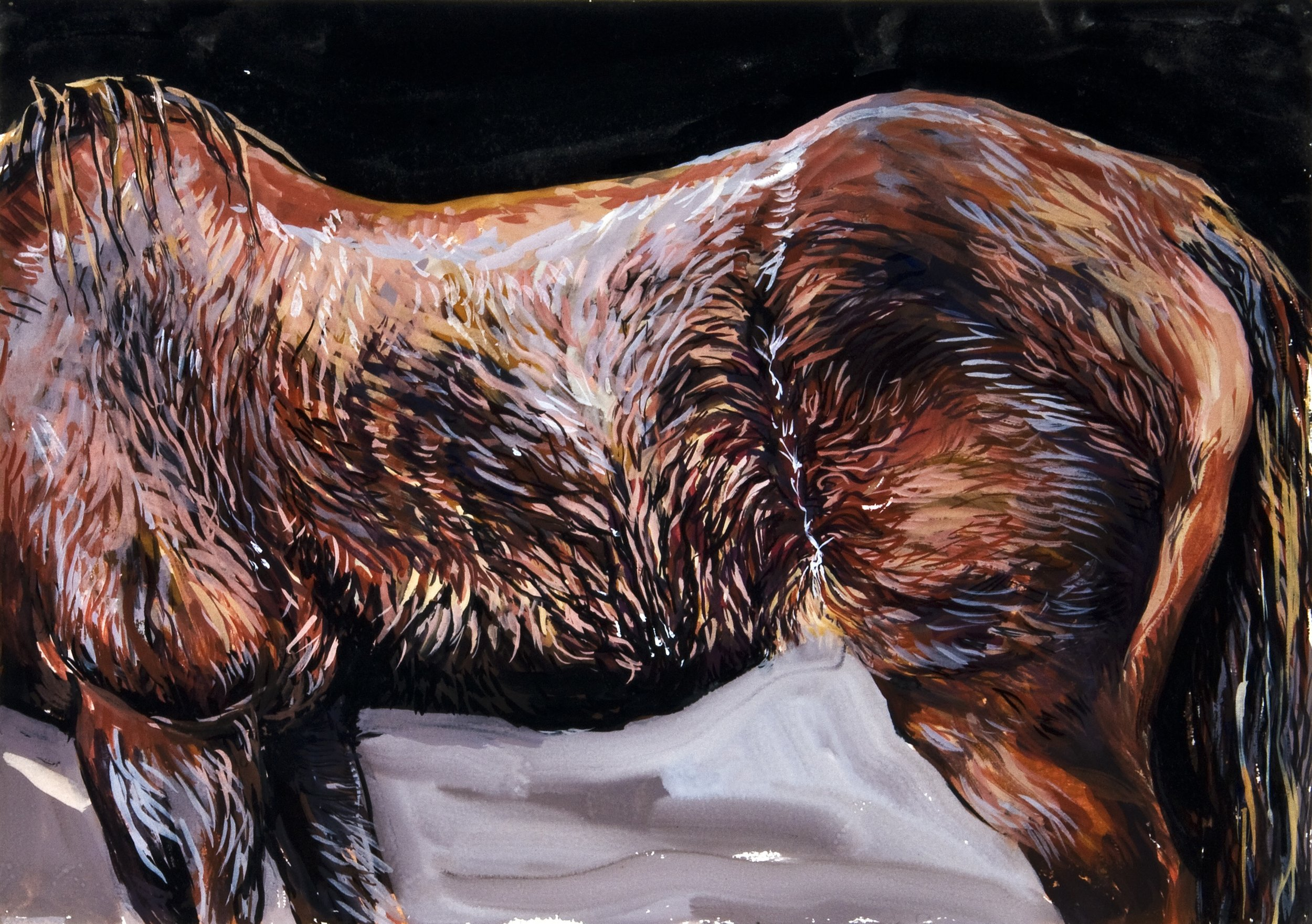 Horse in the rain , 2011, gouache on rag paper, 29cm x 41cm