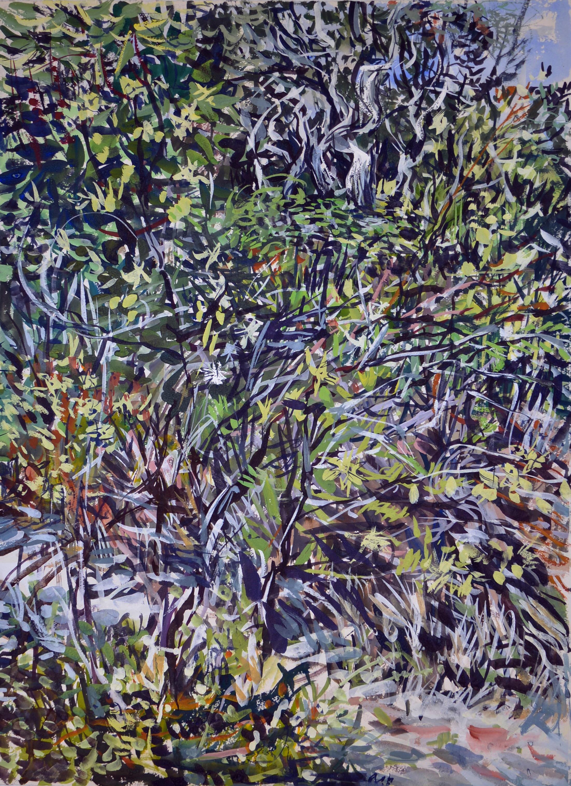 Wallum Landscape 1 (Kathlene McArthur Reserve) 2018 gouache on rag paper 78 x 57cm