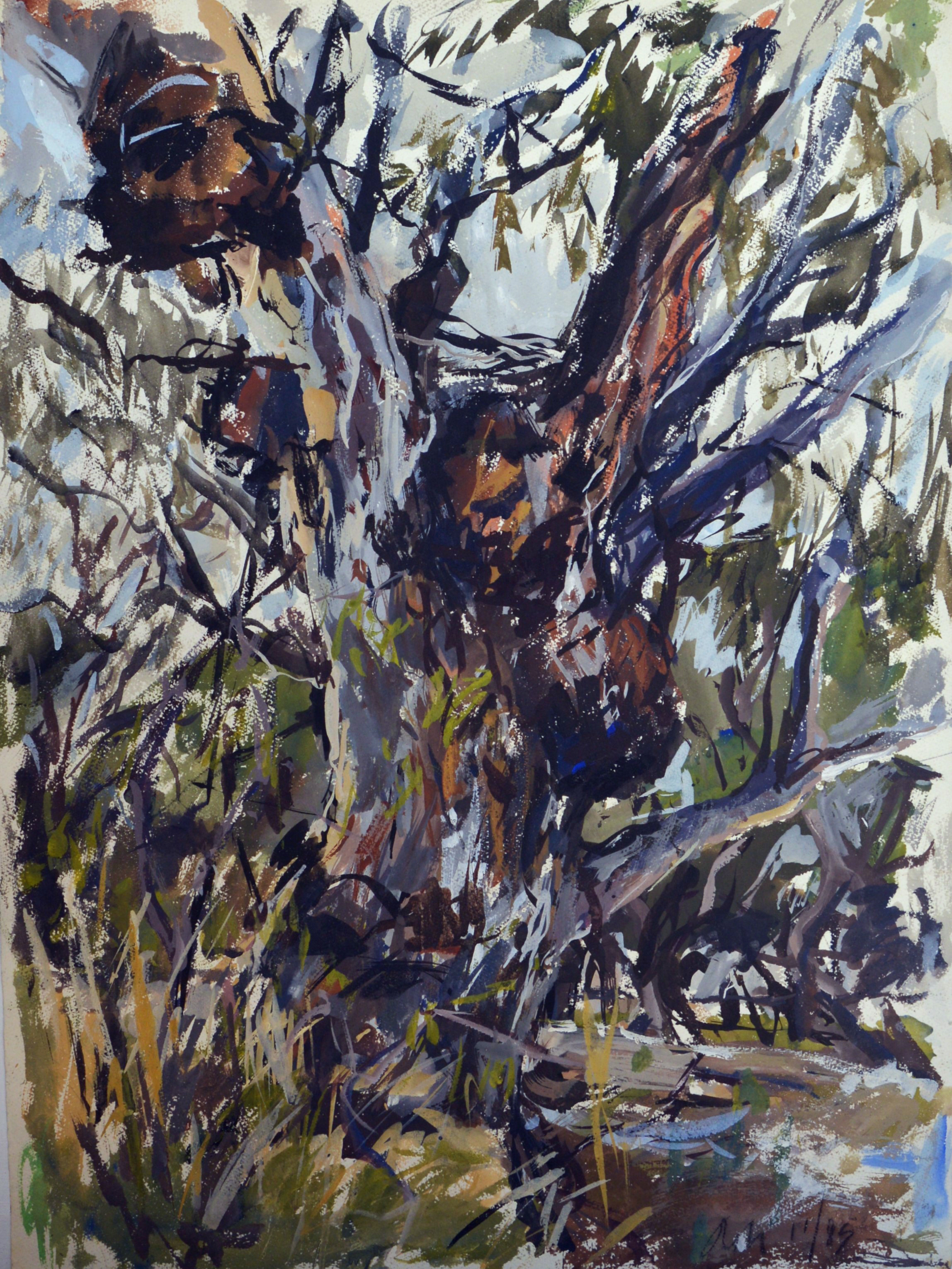 River Red Gum (My Mother's Tree) 1985 gouache on rag paper 76 x 56cm