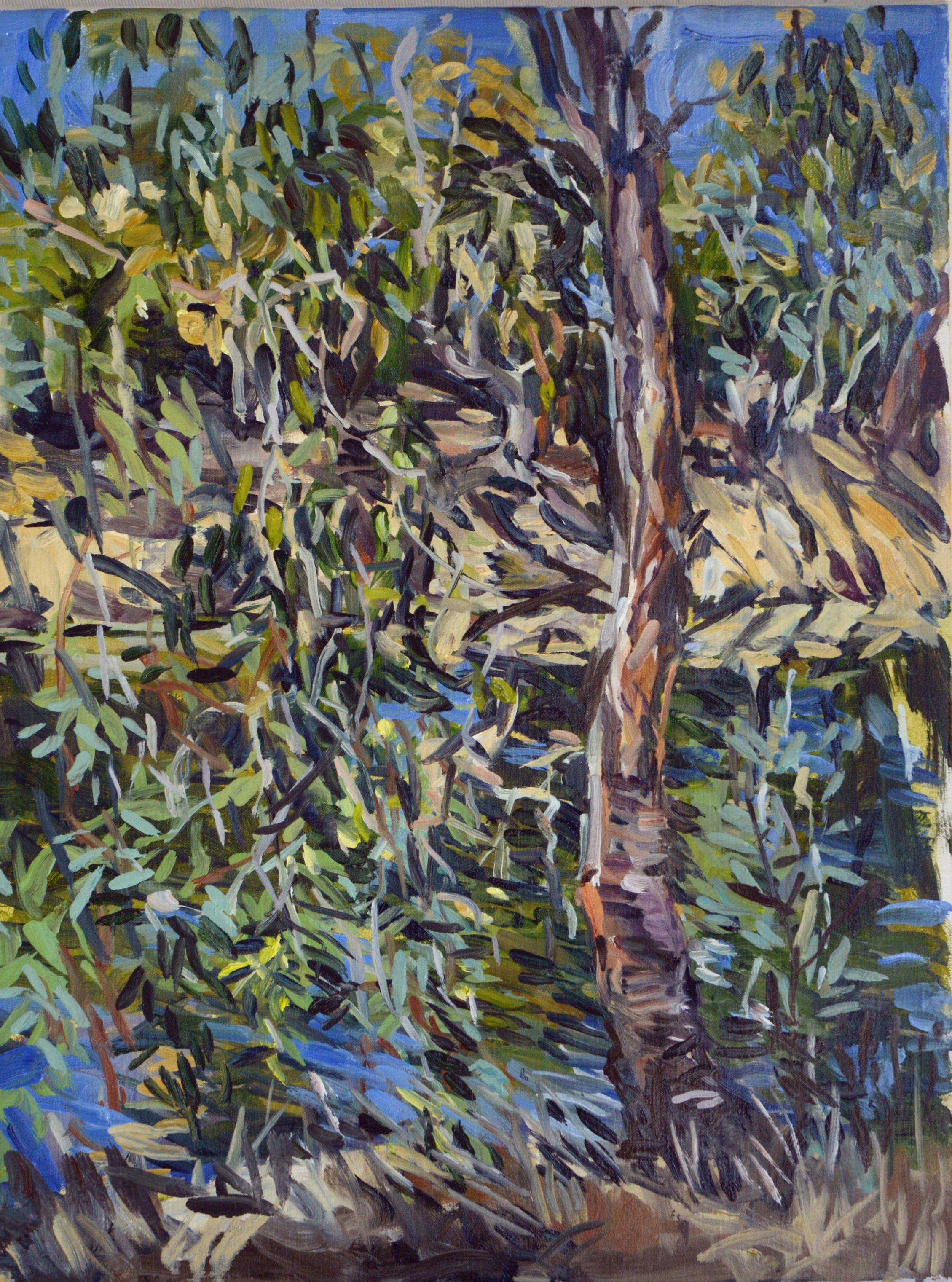 Young River Gum 2018 Oil on Belgian linen 60 x 45cm