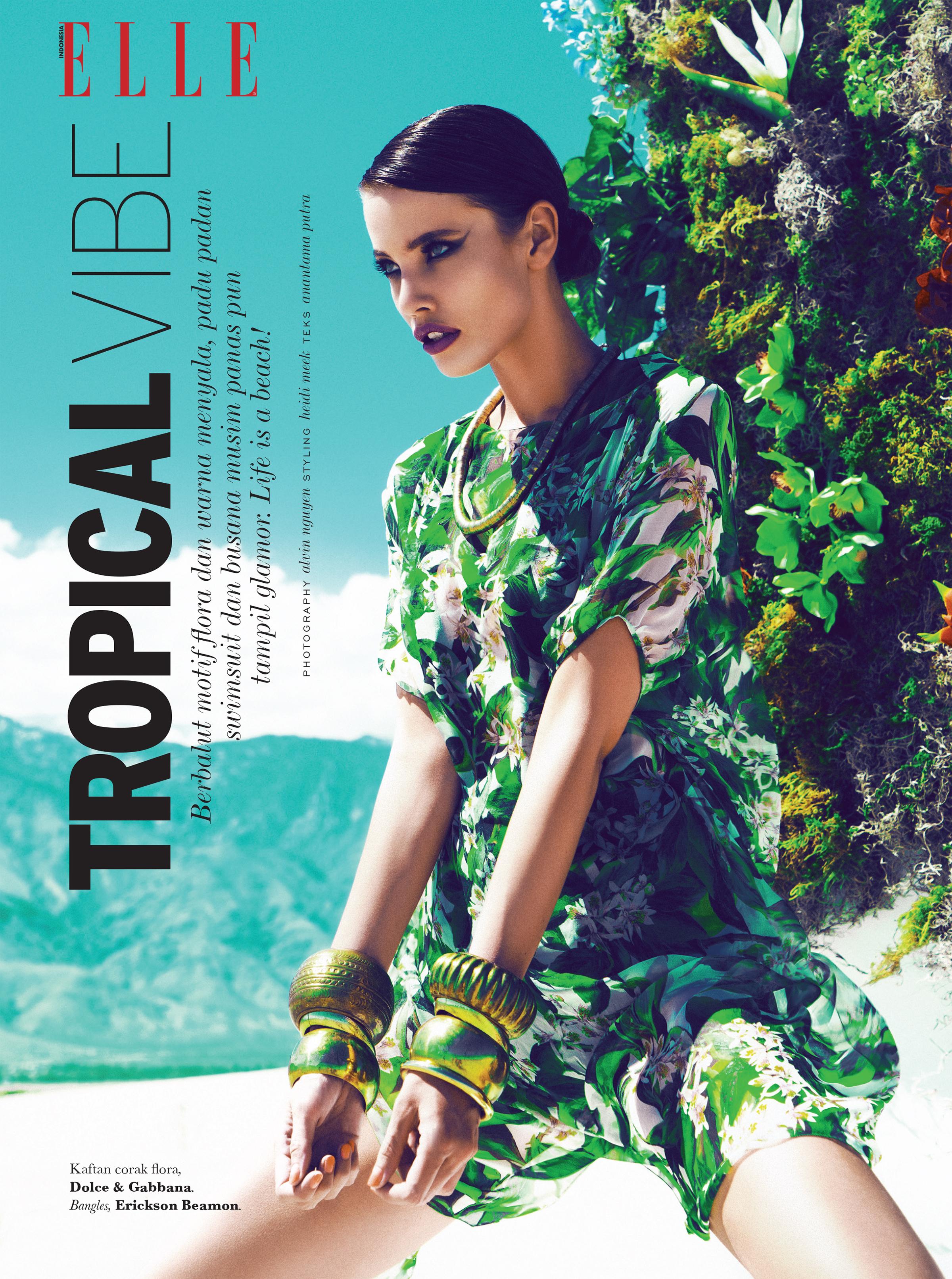 Tropical Vibe 1.jpg