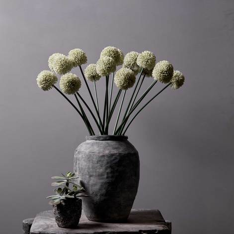Allium_white_vase_471x.progressive.jpg