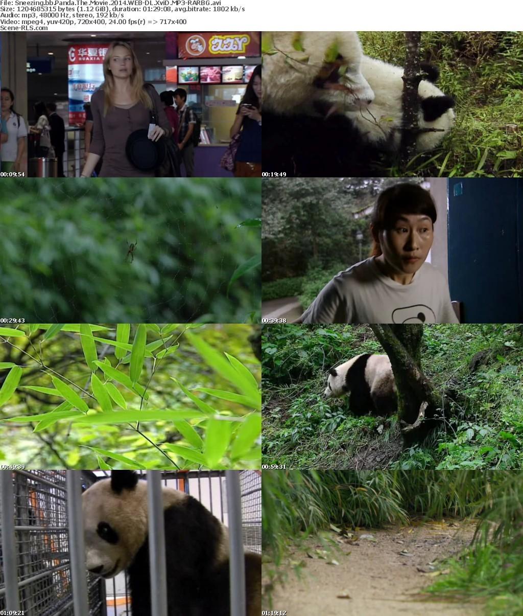 sneezing-baby-panda q .jpg