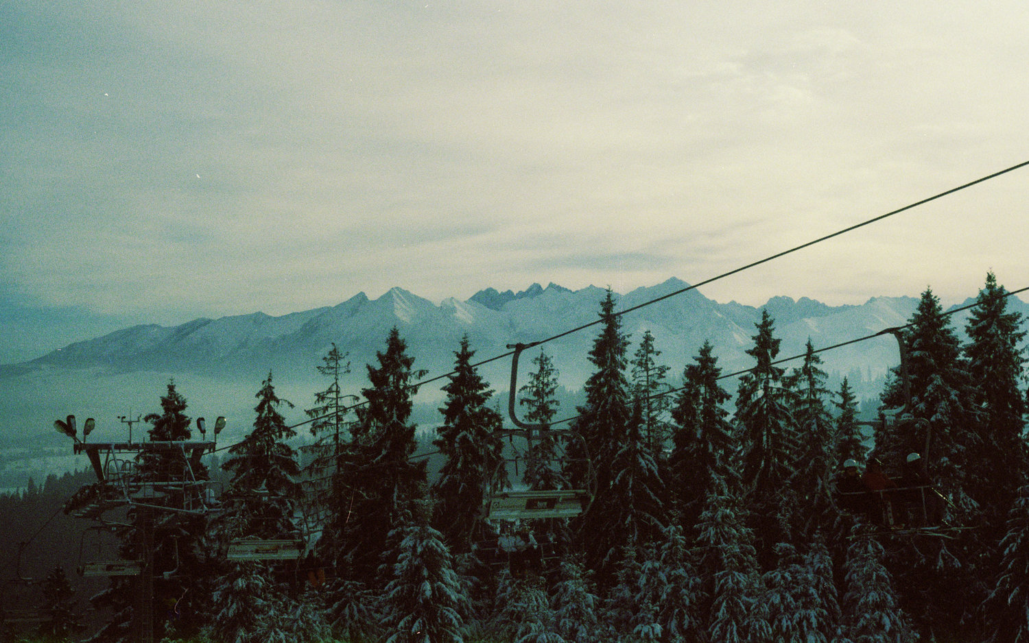 mountains-cable-cars-snow-capped-trees.jpg