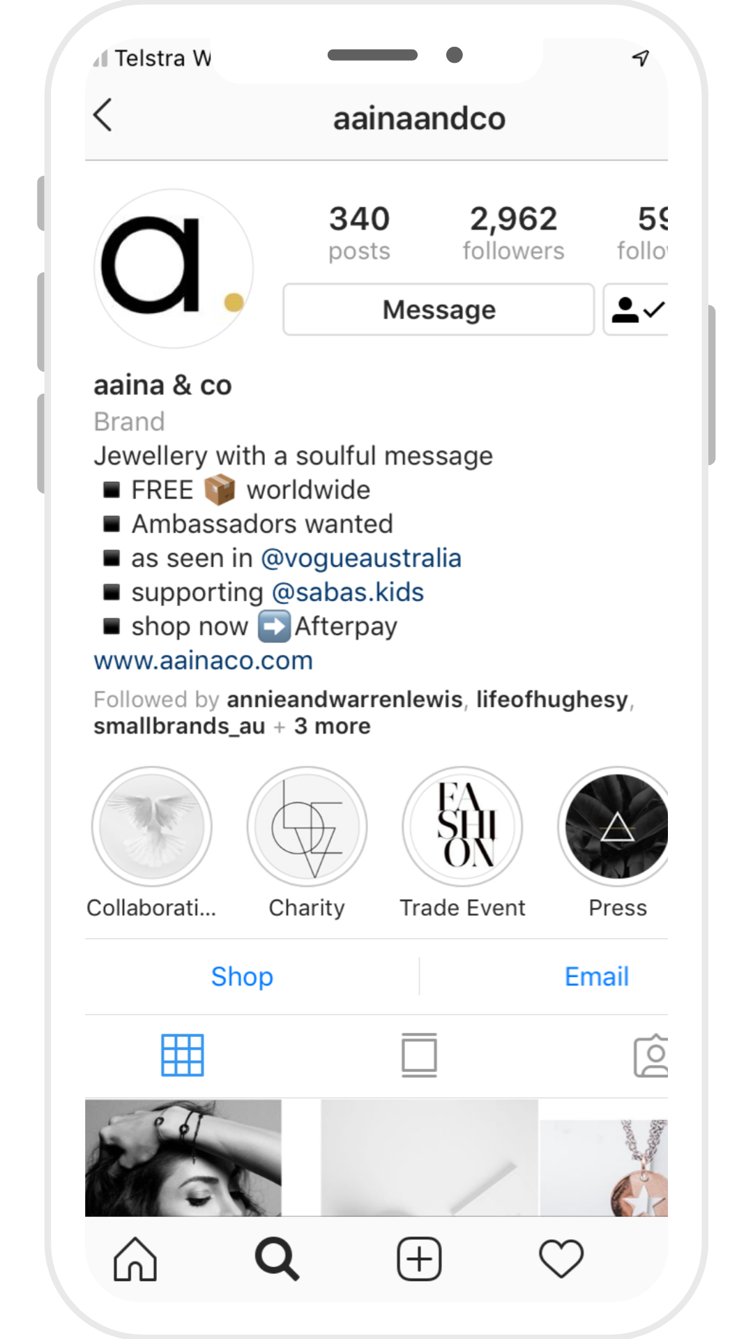 client aaina & co insta feed