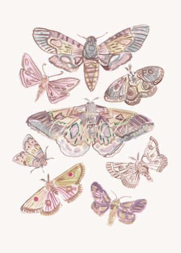 Christie Elise-Editorial-Art Licensing-20.jpg