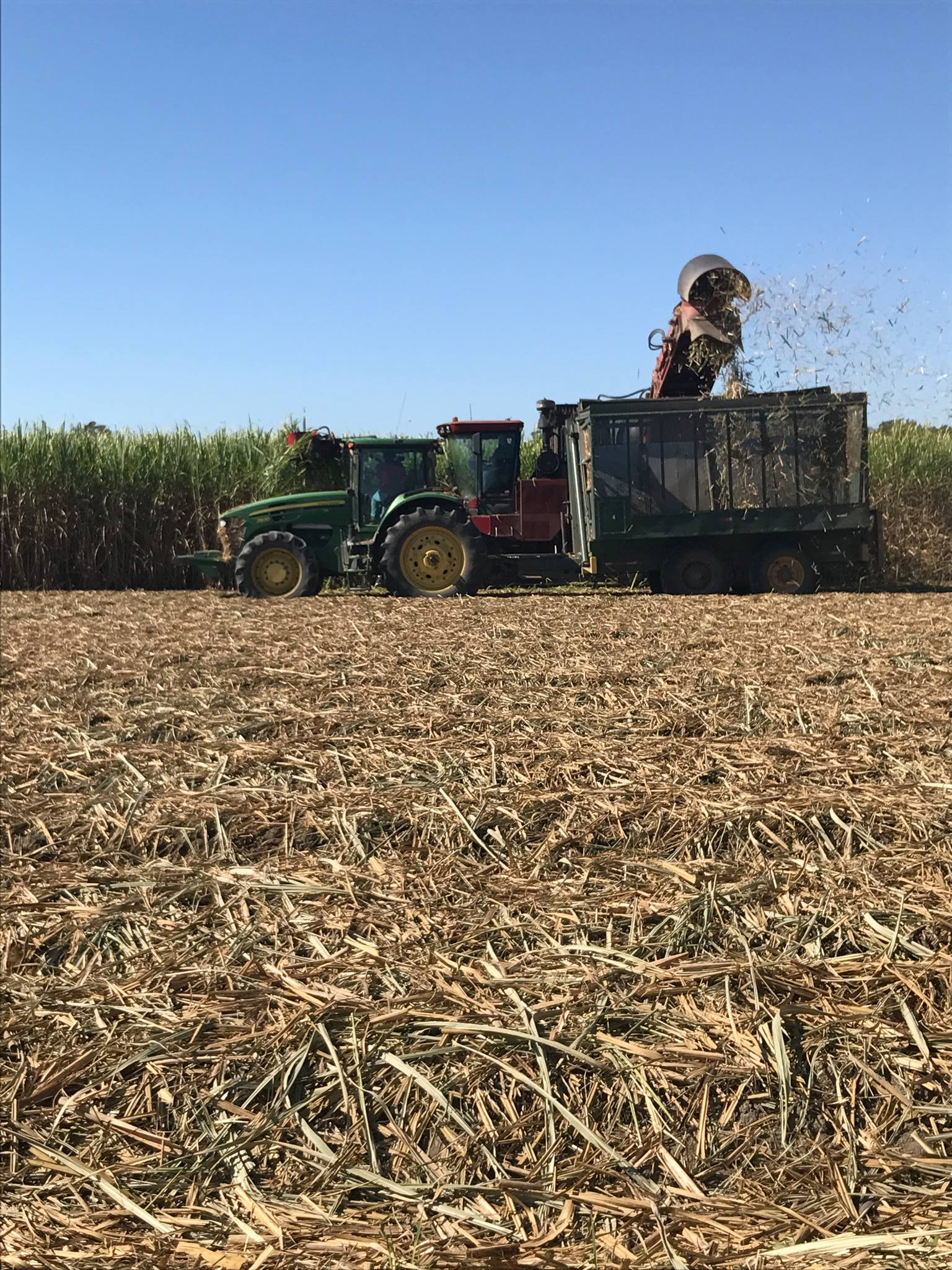 Sugarcane harvest is 63% complete in Louisiana.