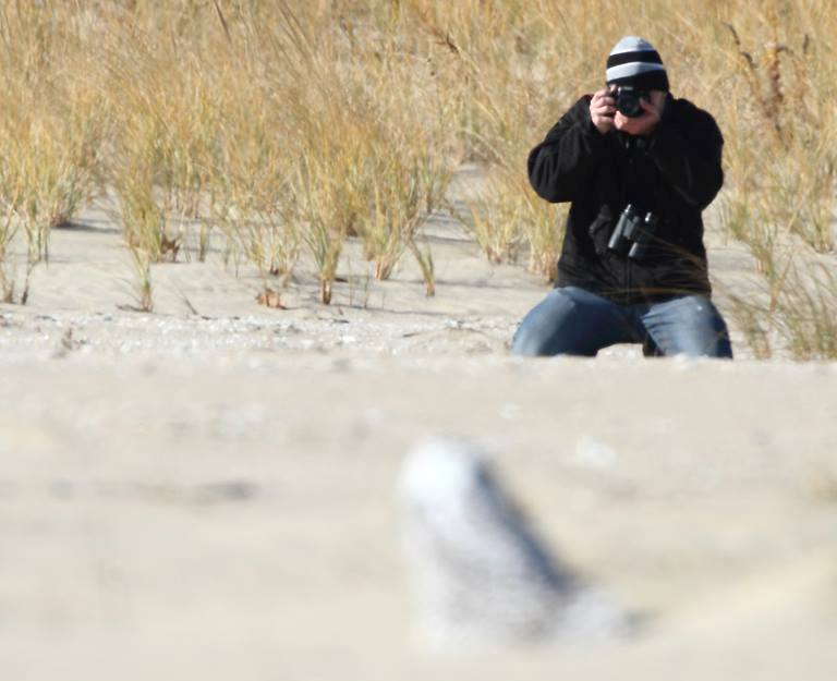 Me photographing my lifer Snowy Owl at Sandy Hook, NJ. (photo by Brett Klaproth)