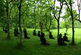Plum Village Buddhas