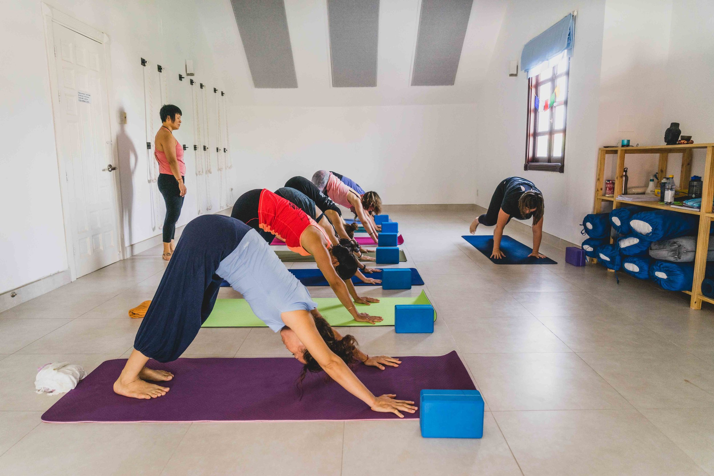 200-hour-yoga-teacher-training-kingston-ontario-canada