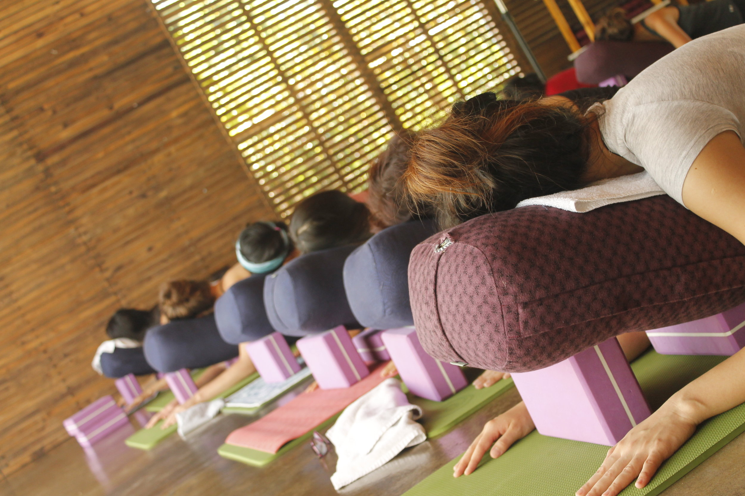 restorative-yoga-teacher-training-kingston-ontario-canada