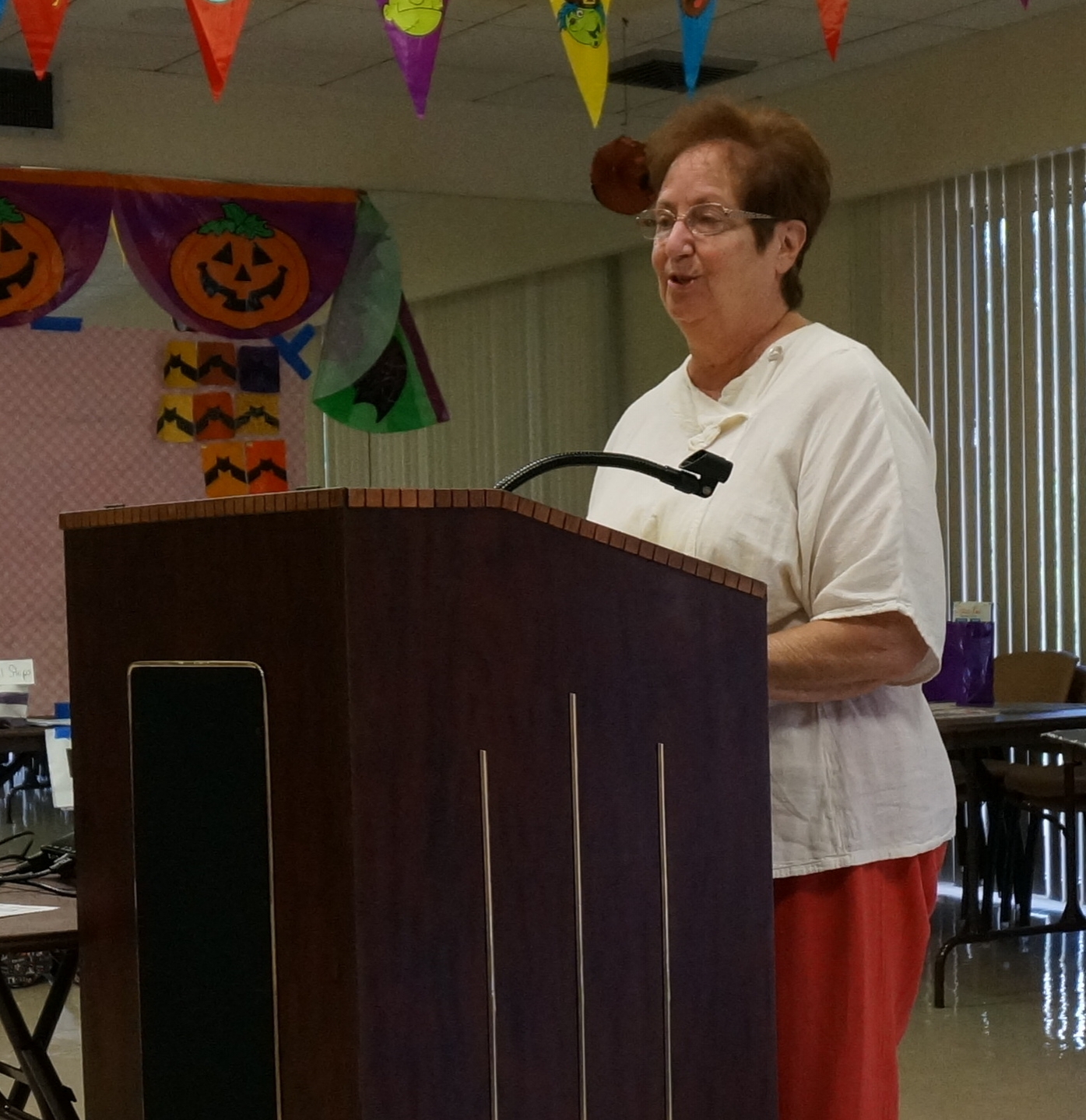 Judy Kaplan from BQE talks us through quilt show entry for 2017