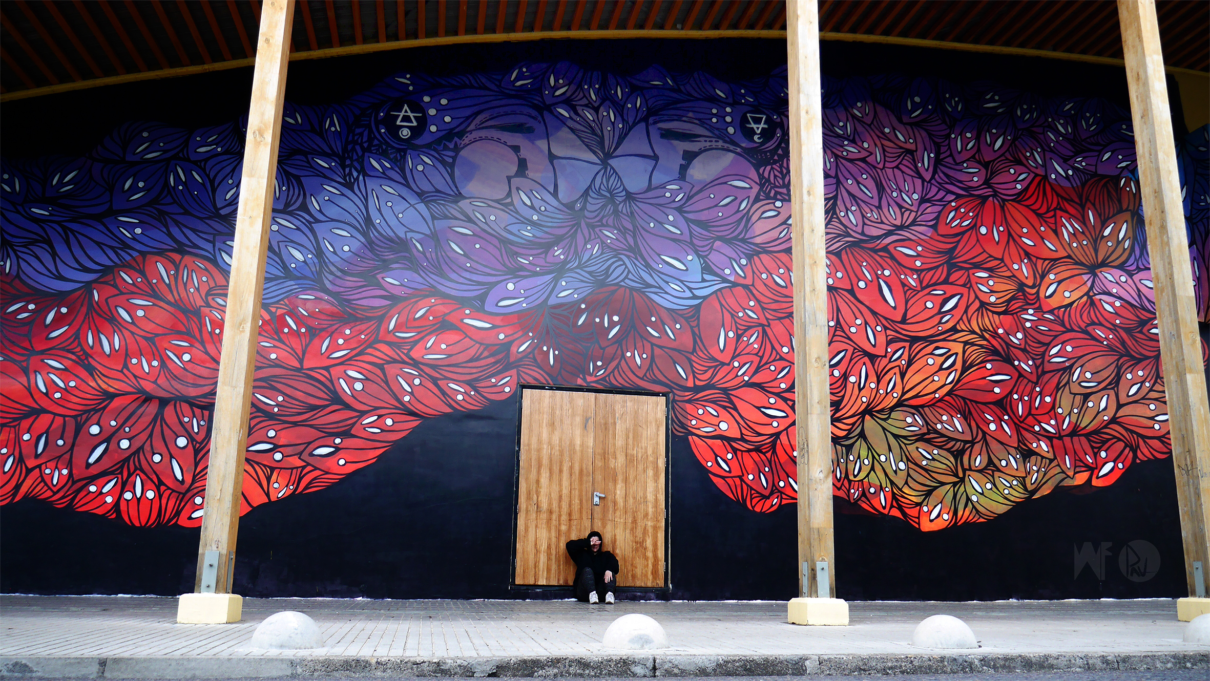 MIRRORS - Mural painted for Project Wallflowers in collaboration w/ Centro Cultural Coyhaique, Patagonia - Chile 2016