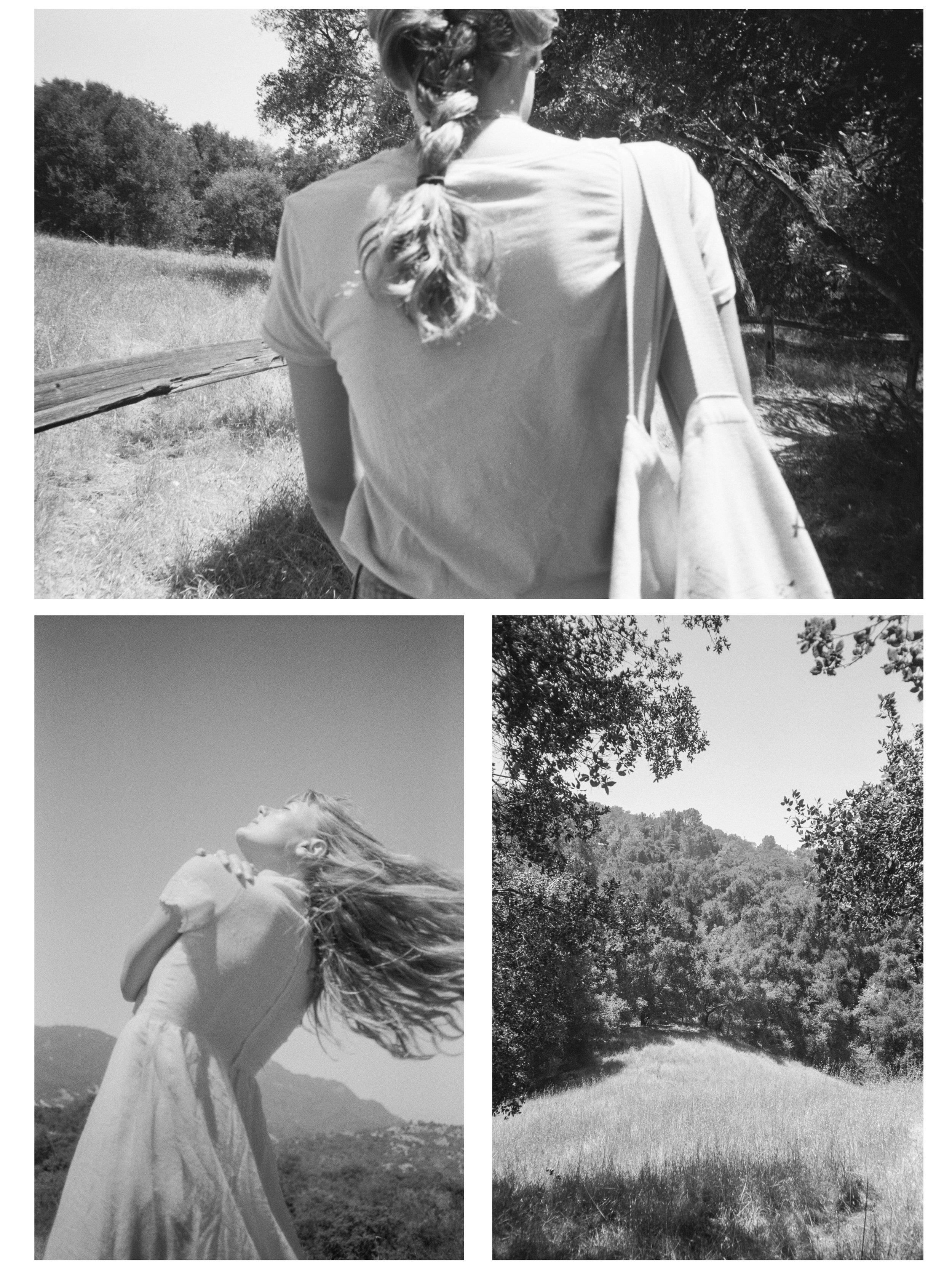 topanga canyon.jpg