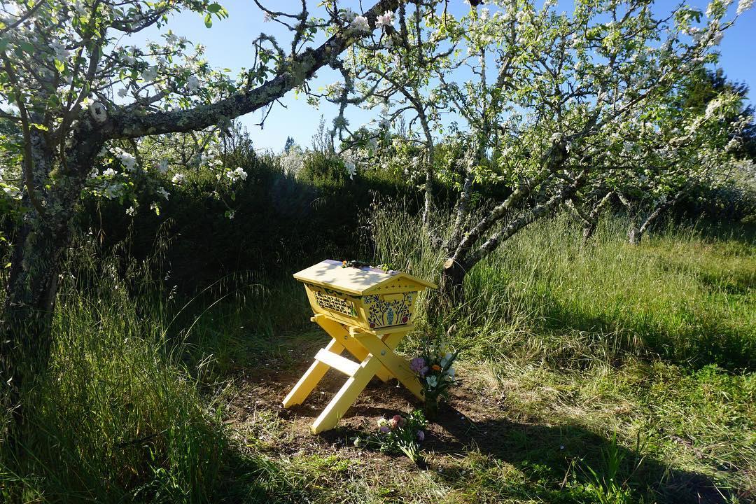 AriellaDaly_yellow_hive