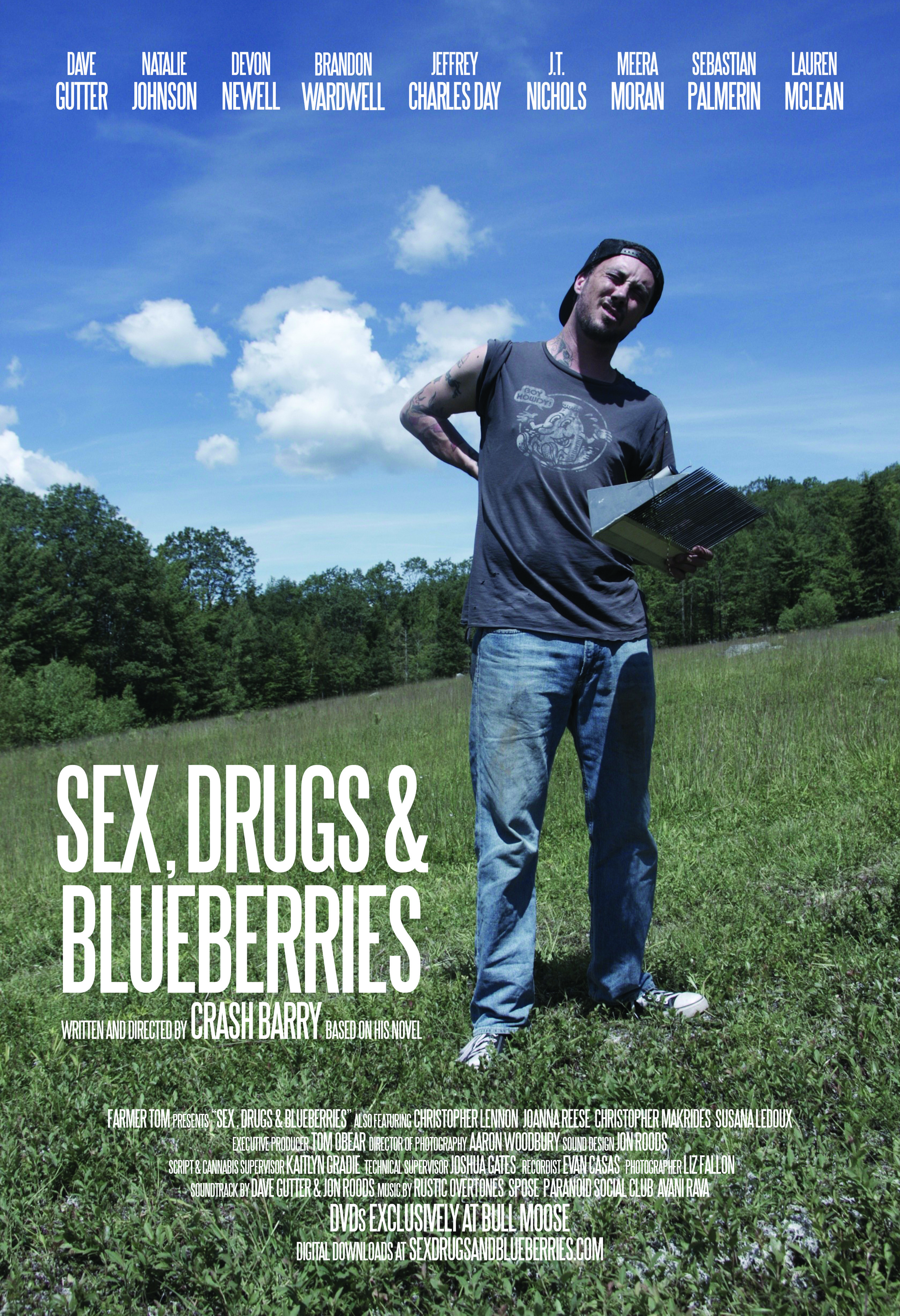 sexdrugsandlblueberries poster