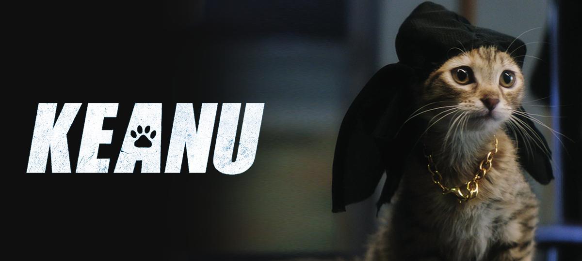 Rent Keanu DVD and Blu-ray