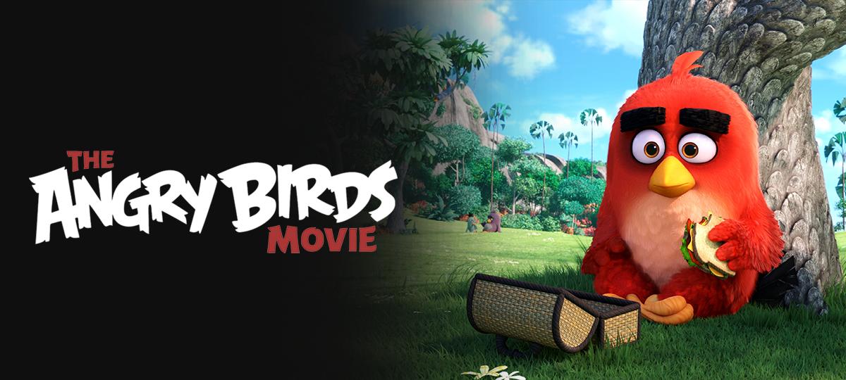 Rent Angry Birds Movie DVD