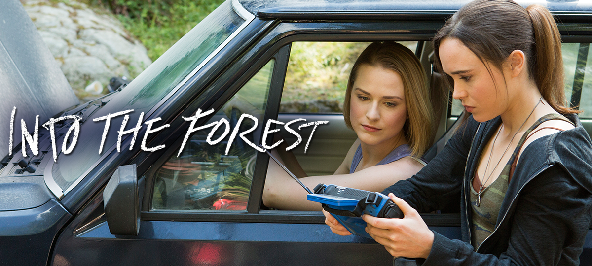 Rent Into the Forest DVD and Blu-ray