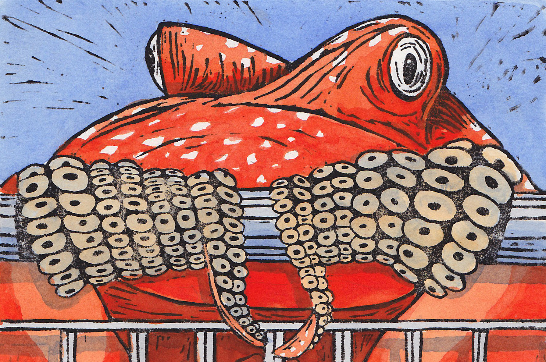 octopush.jpg
