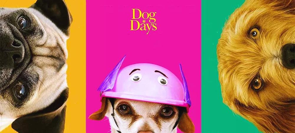 Dog Days for Blog.jpg