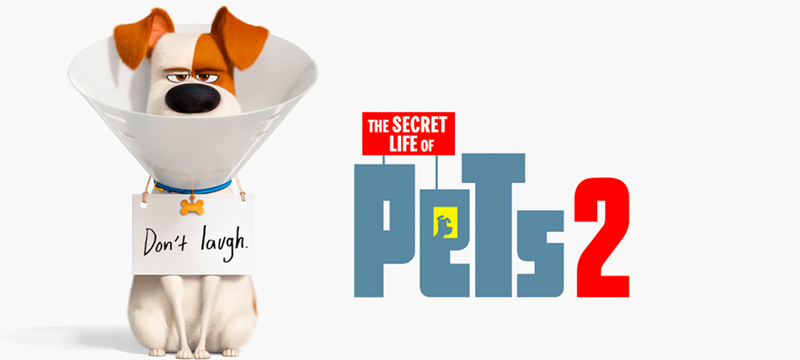 The-Secret-Life-of-Pets-2-for-Blog.png