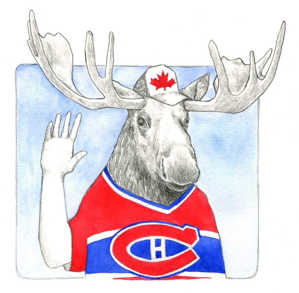 Canadian moose001.jpg