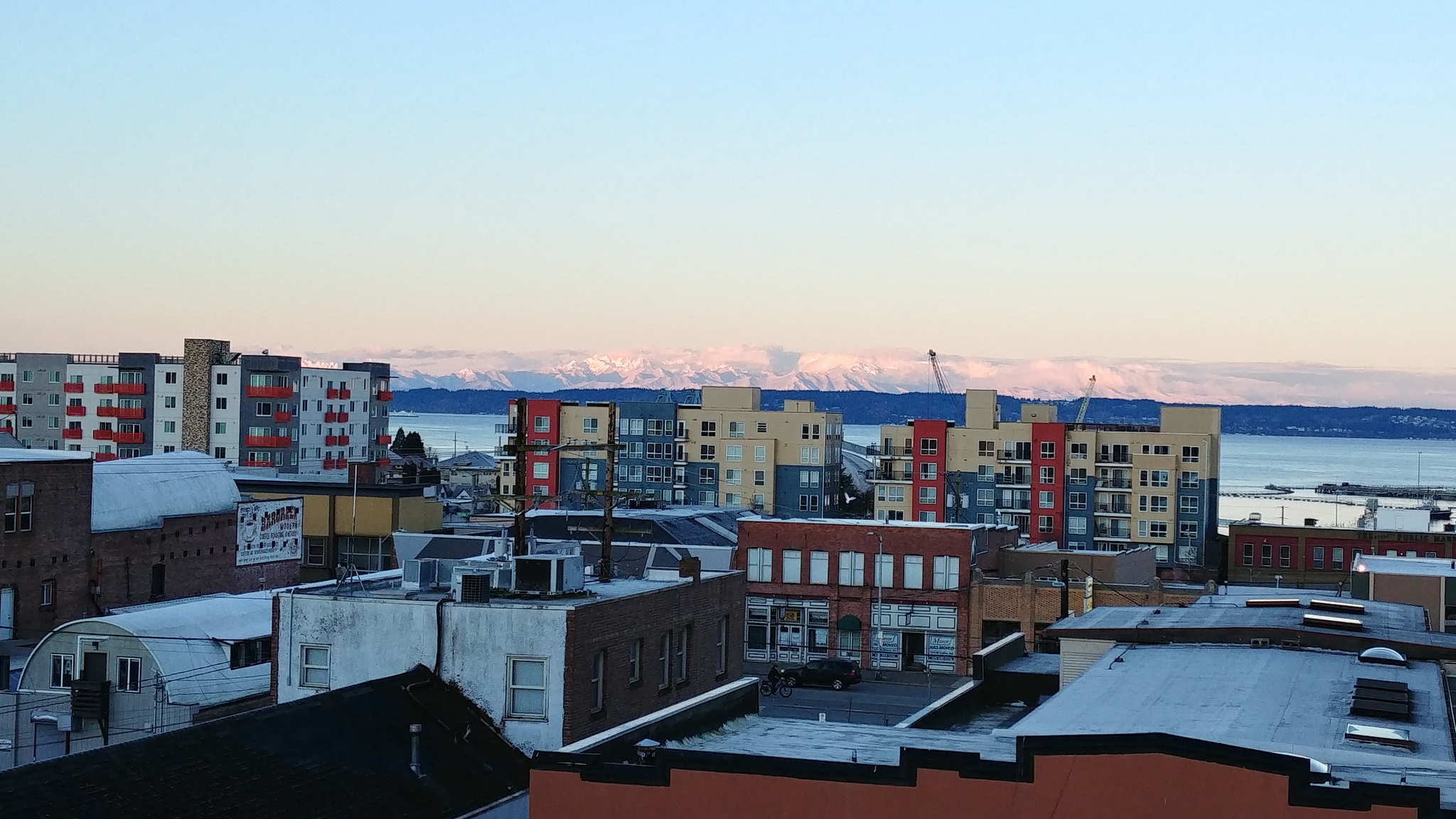 The Olympic Mountains seen from Everpark // Christopher Bragg
