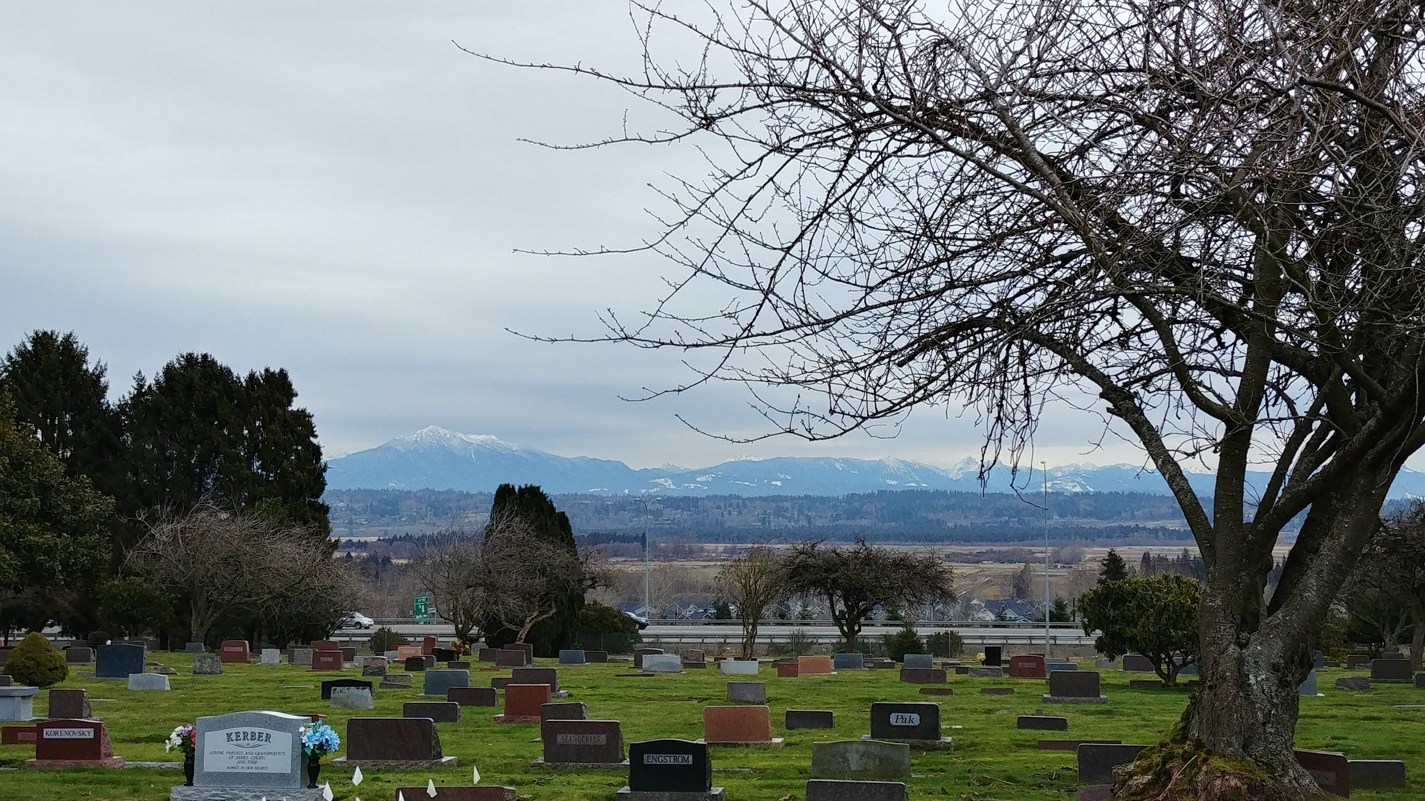 Peaceful, gorgeous views from Evergreen Cemetery and Cypress Lawn Memorial Park // Christopher Bragg