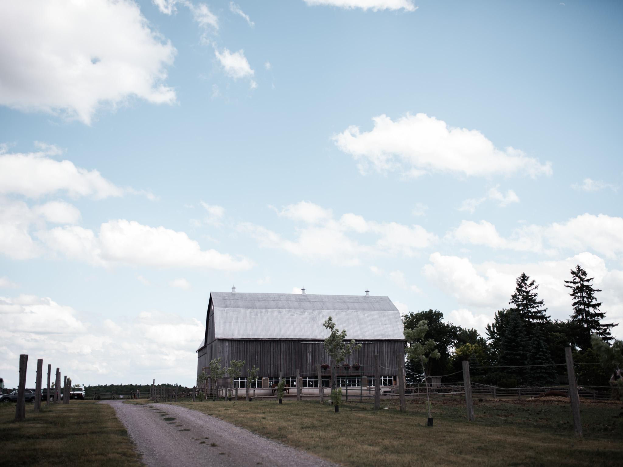 Polmenna Barn Wedding