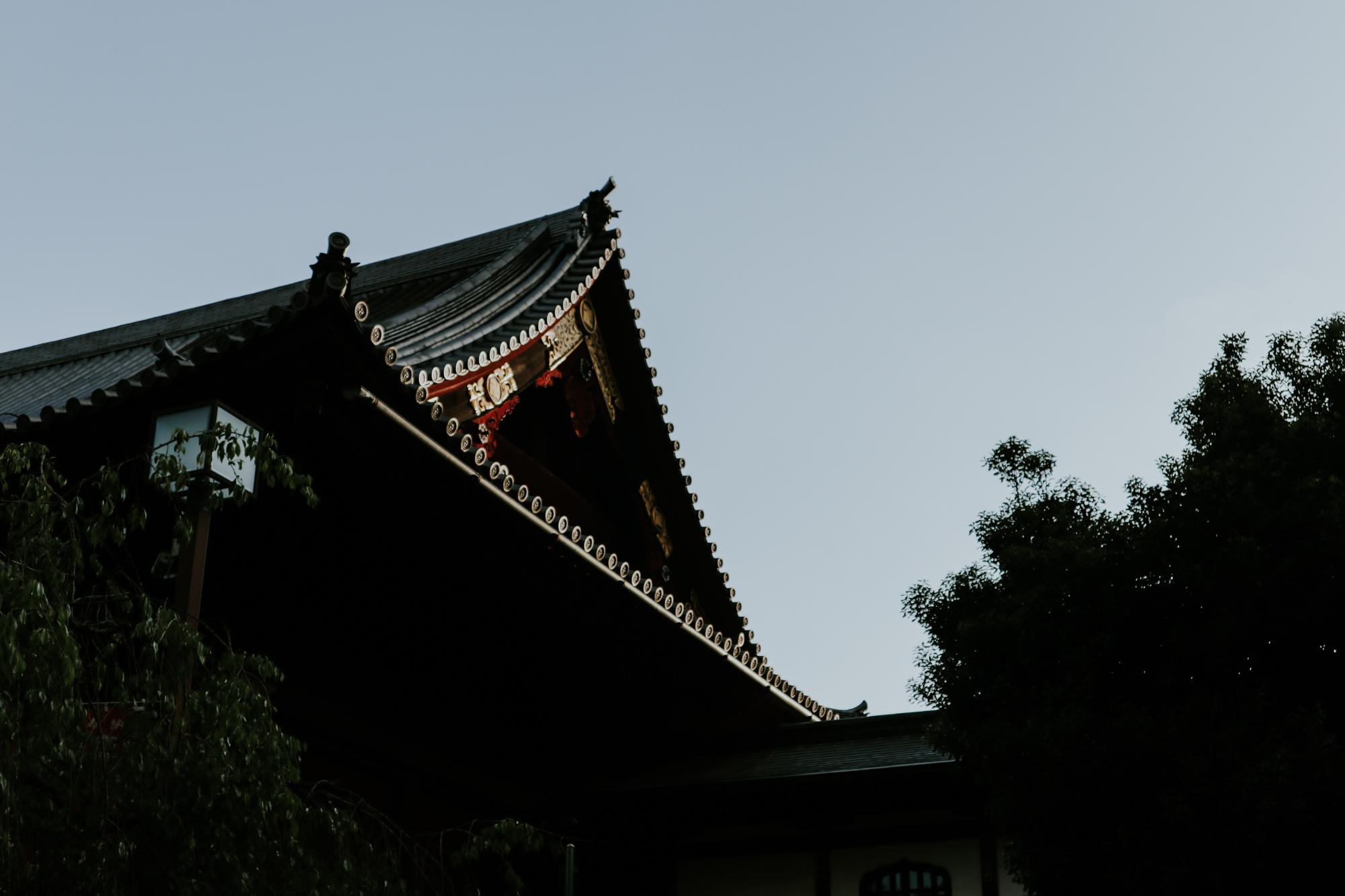 IMG_0097-2.jpg