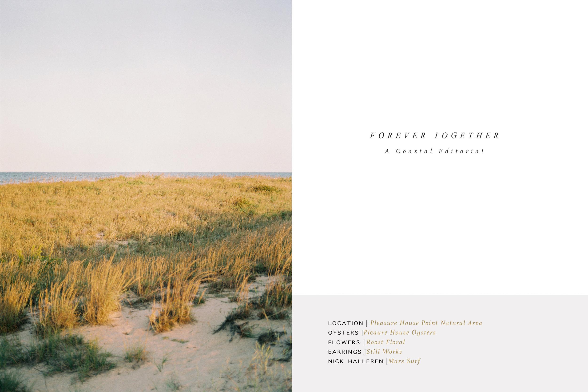 Forever Together 01.jpg