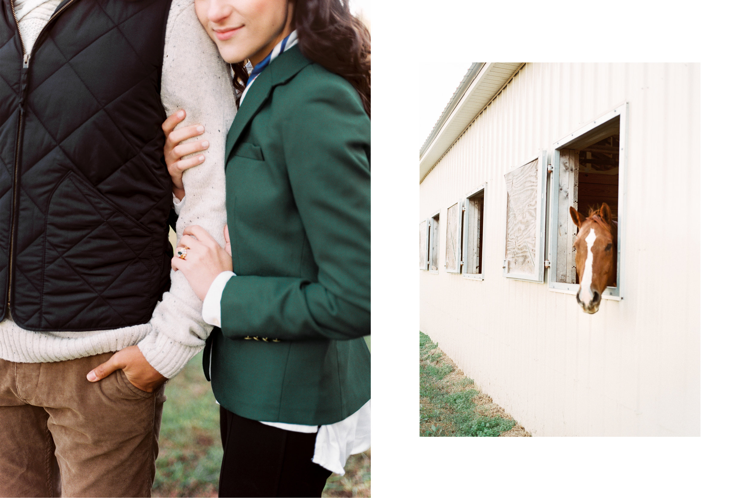 An Equestrian Editorial 11.jpg