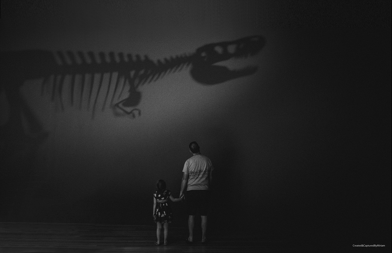 In The Shadow Of A Dinosaur