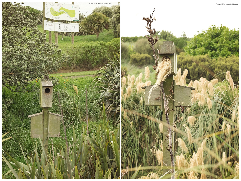 Nowells Lake birdhouses